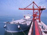 Servizio certo di logistica di trasporto da Guangzhou a Kaohsiung
