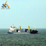 buque de carga del carguero de graneles 18000dwt