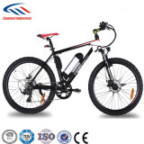 LCD Speed Electric Bicycle Hot Knows them MTB Ebike Lmtdf-20L