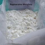 Benzocaine порошка здравоохранения местный наркозный сырцовый стероидный для культуризма