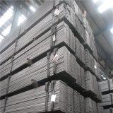 Barra piana d'acciaio galvanizzata tuffata calda di qualità principale della fabbrica