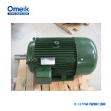 Omeik EFF2 1Индукционный электродвигатель HP