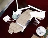 حارّة عمليّة بيع [س] موافقة رف أسنانيّة كرسي تثبيت وحدة
