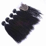 Indische Kroezige Natuurlijke Kleur 100% van het Menselijke Haar van de Krul Maagdelijk Haar