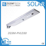 Mikrowellen-Induktions-integriertes Solarstraßenlaterne40W