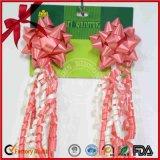 """10 """" Wedding Day를 위한 Gift Decoration의 별 Bow Set"""