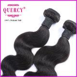 Prolonge péruvienne/brésilienne/malaisienne des bons prix de Quercy de Vierge de cheveux humains de corps d'onde de cheveu
