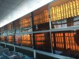 Het LEIDENE Licht van het Comité met De Trilling Vrije 595X595mm/2X2FT van het ce/UL- Certificaat