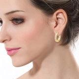 Kleine Huggie Ohrring-Frauen-Entwürfe löschen Zirconia-Ohrring