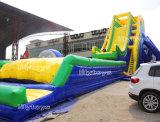 子供のゲームのおかしい屋外の娯楽Inflatablesの販売のためのプールが付いている大きい子供水スライド