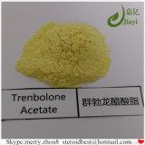 Aufbauendes Steroid-Puder Finaplix H Trenbolone Azetat für das Muskel-Sperrig sein
