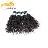 Clip indien de trame de Remy de cheveux humains sur la prolonge de cheveu