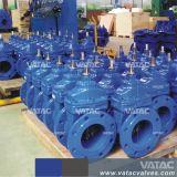 Valvola a saracinesca molle standard della sede di BACCANO (Z41X)
