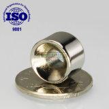 Magneet van het Neodymium NdFeB van de Ring van de zeldzame aarde de Vernikkelde