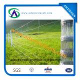 De hete Ondergedompelde Gegalvaniseerde Omheining van het Gebied van het Landbouwbedrijf/de Omheining van de Weide/de Omheining van het Vee