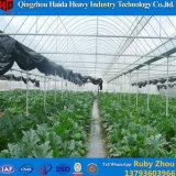 Landwirtschafts-Gemüse verwendetes Handelsfilm-Gewächshaus