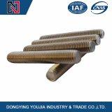 Vite prigioniera dell'acciaio inossidabile DIN976 con gli standard di BACCANO, ANSI, iso, JIS, GB