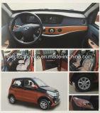 2018 Nieuwe Elektrische Stedelijke MiniPassagier 4 van de Stad de Elektrische Auto's van de Deur SUV