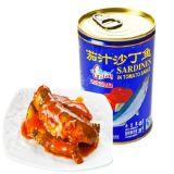 Tomato Sauce에 있는 최신 Sales Fresh Crop Premium Quality Canned Sardine