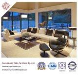 Los muebles sucintos del hotel para la sala de estar con muebles fijaron (YB-B-20)