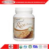 Pó 80%, 300m para a indústria alimentar e esporte Nutriton da proteína do arroz do Vegan