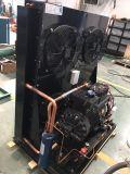 Bitzer Marken-halbhermetischer Kompressor-kondensierendes Gerät komplett mit Kondensator Fnh-150