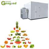 Gyc Sala de congelador de armazenamento a frio para frutas e produtos hortícolas Leite Batata frango de carne