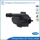 Pompe instantanée à haute pression de chauffe-eau de 12V 24V mini