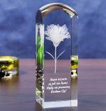 Unieke Duidelijk met 3D Kubus van het Kristal van het Embleem