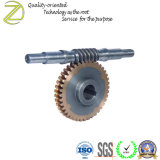 Custom Service Precision CNC Machining WORM Shaft