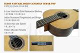 Guitare classique d'Aiersi avec le certificat de BV/SGS (SC02ARB)