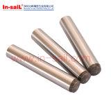 Standardkegelzapfen-Pass-Stifte des Edelstahl-DIN1/ISO2339