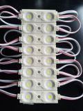 Módulo de alta pressão da injeção do ABS de Ww/Pw/Cw 0.72W 2-LEDs SMD2835 para o Signage/luz de néon/caixa leve e a fachada