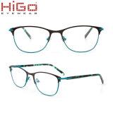 Roestvrij staal die van de heet-Verkoop van Higo van de volledig-rand het Nieuwe Materieel Metaal Eyewear oppoetsen