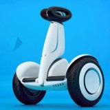 Billig 2 Rad-elektrischer Roller für behindertes mit APP
