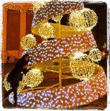 Attraktive Festival-dekorative Licht-im Freienmotiv für Weihnachten