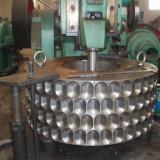 De Europese Houtskool die van de Briket van het Zaagsel van de Technologie Hydraulische Machine maken
