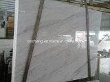 Похожие отели Китая белого мрамора для Tile слоя