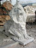 Leoni di marmo intagliati mano di sonno