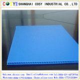Folha plástica do Polypropylene oco da alta qualidade para a impressão