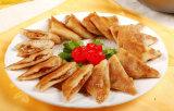 China brachte das Frischfleisch voran, das Maschine flachdrückt