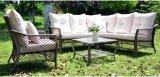 Insieme di vimini della mobilia del giardino del sofà del sofà esterno del rattan