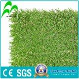 Herbe artificielle, herbe d'horizontal, herbe synthétique pour des sports (services d'OEM)
