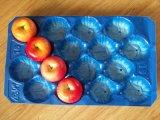 Bandejas populares de los PP para el empaquetado fresco de la fruta y verdura