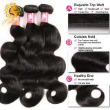 100%の10A等級のバージンの人間の毛髪のブラジル人の毛を編むブラジルのバージンの毛