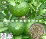 Выдержка Aurantium цитруса Kingherbs 100% естественная: Гесперидин 90%, 95%, HPLC 98%