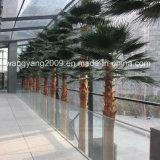 Пальма фабрики оптовая горячая декоративная пластичная искусственная