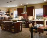 De nieuwe Stevige Houten Keukenkast van het Ontwerp #139