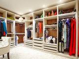 Хранение шкафа стены комнаты изготовления неофициальных советников президента живущий
