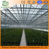 Plants와 Vegetables를 위한 일요일 Sheet PC Board Greenhouse